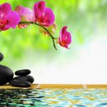 Relajación: 7 Beneficios Comprobados Científicamente